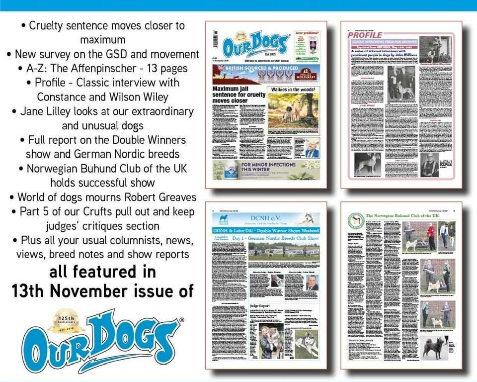 Our Dogs 11/13/2020 Vorschau